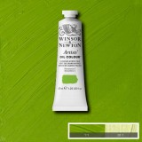 Cadmium Green Pale Winsor and Newton Artists' Oils 37ml